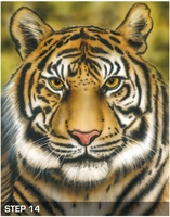 harder-steenbeck-tiger-wildlife-stencil-with-step-by-step-instructions-17