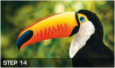 harder-steenbeck-toucan-stencils-with-step-by-step-instructions-15