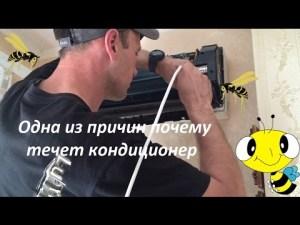 Техническое обслуживание кондиционера Киев Житомир
