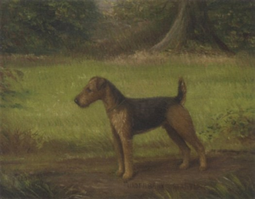 "Underbank Startler"", a terrier , 1920"