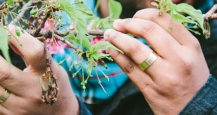 pedido de casamento em buenos aires