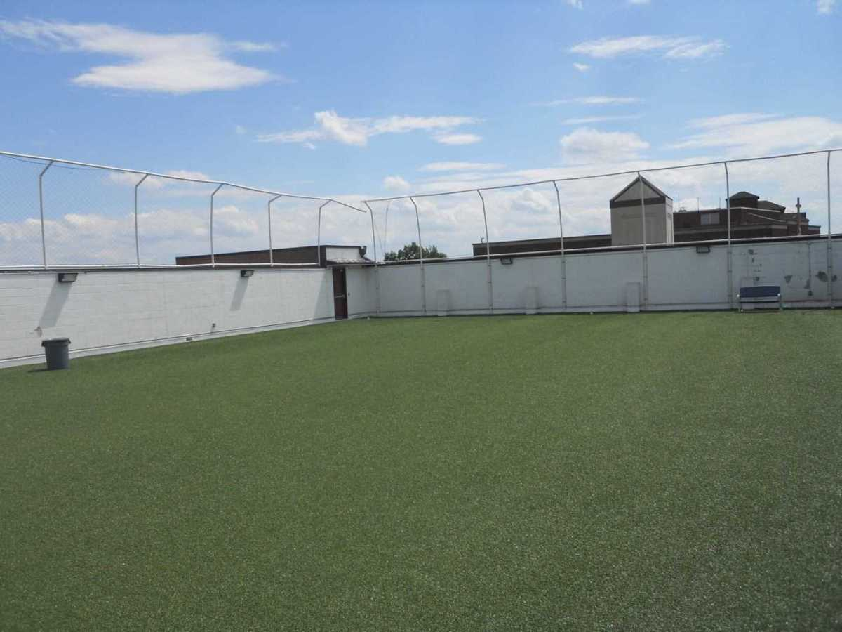 artificial grass, synthetic grass, fake grass