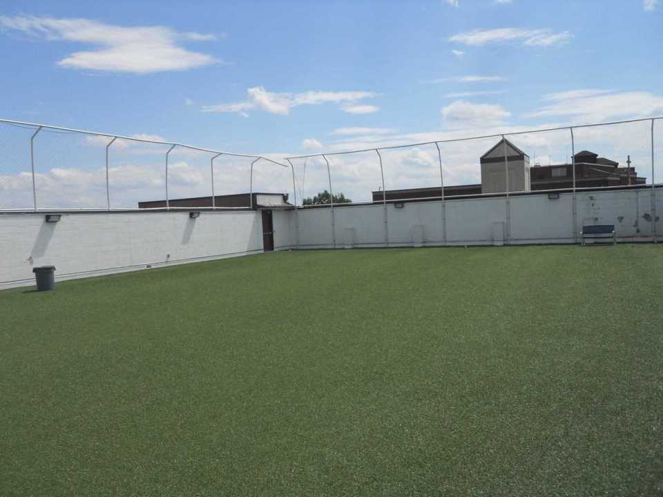 artificial grass, synthetic grass, fake grass