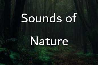 sound of nature category