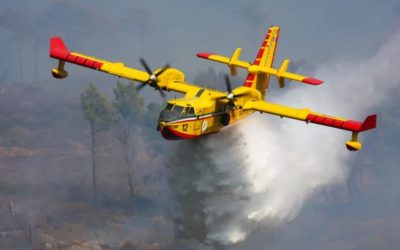Insight:  Monday 5 October 2020:  Putting Out the Fires