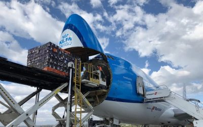 Q2 no better than Q1 for Air France-KLM