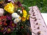 20151026 rosa mosqueta