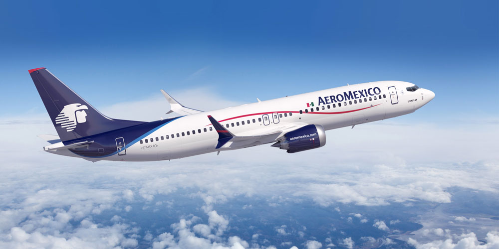 Aeromexico Hand Cabin Checked Excess Baggage Allowance