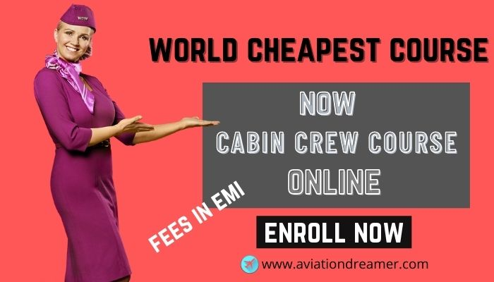 online cabin crew course for female male in affordable price Airplane GEEK Online Cabin Crew Course for Female & Male in Affordable Price