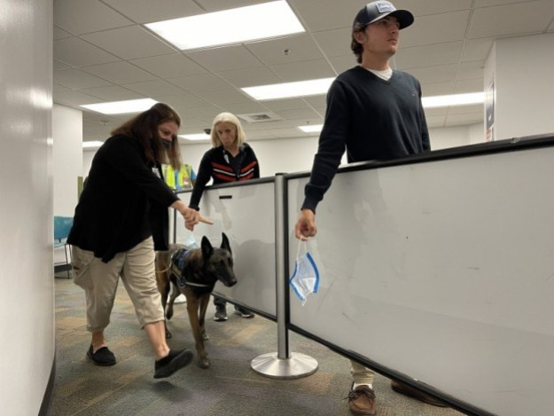 mia is first u s airport to test covid 19 detector dogs 2 Airplane GEEK MIA is first U.S. airport to test COVID-19 detector dogs