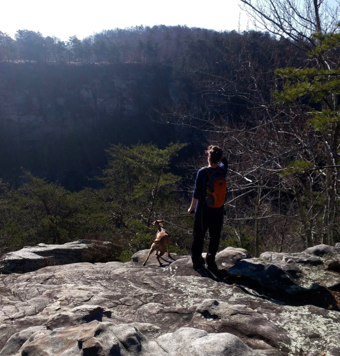 cloudland canyon view