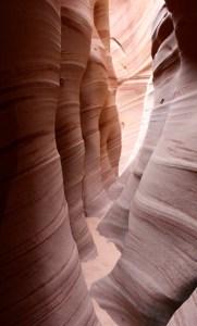 zebra canyon grand staircase escalante national monument