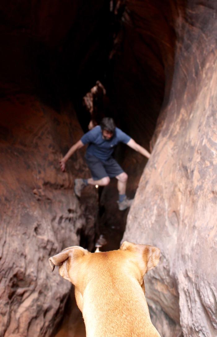 tunnel canyon grand staircase escalante national monument