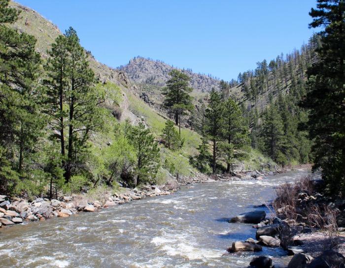 poudre river greyrock mountain