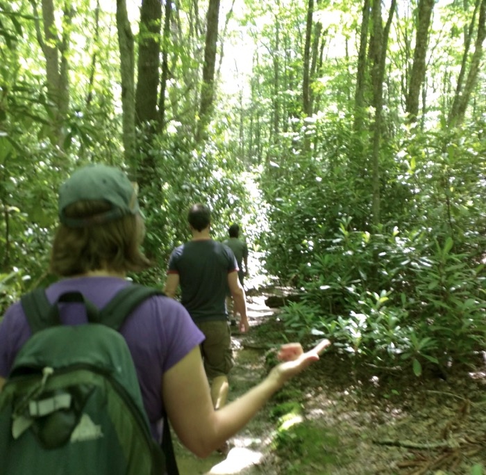 hiking green knob trail blowing rock