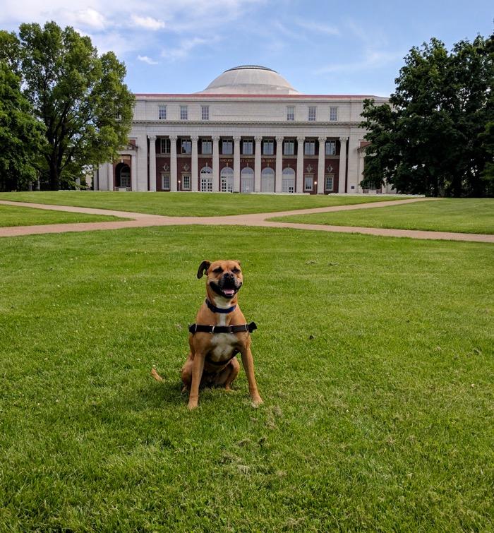 Bugsy at Vanderbilt
