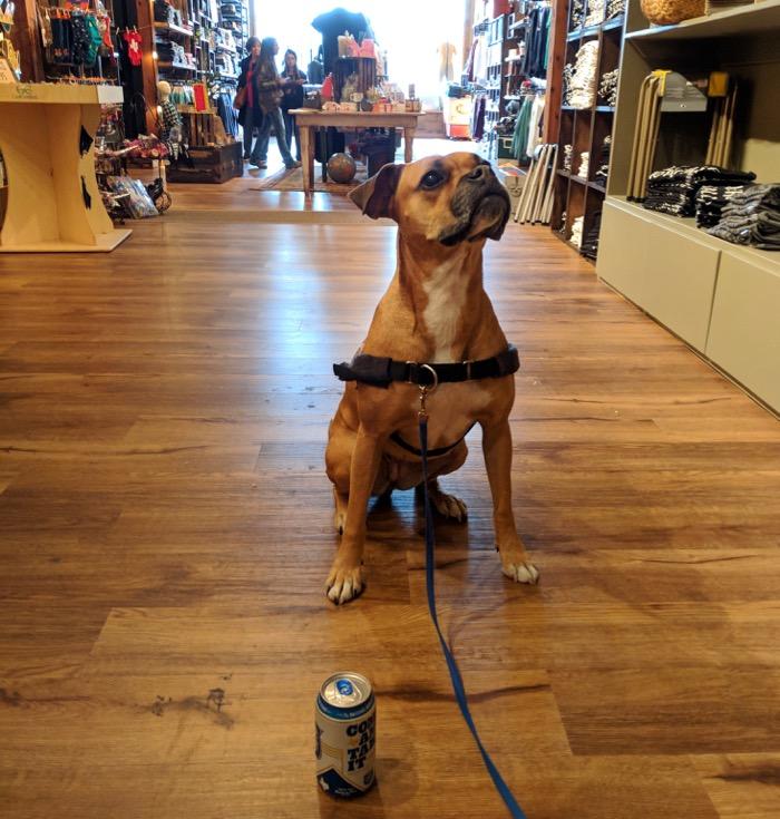 dog friendly shopping in fredericksburg