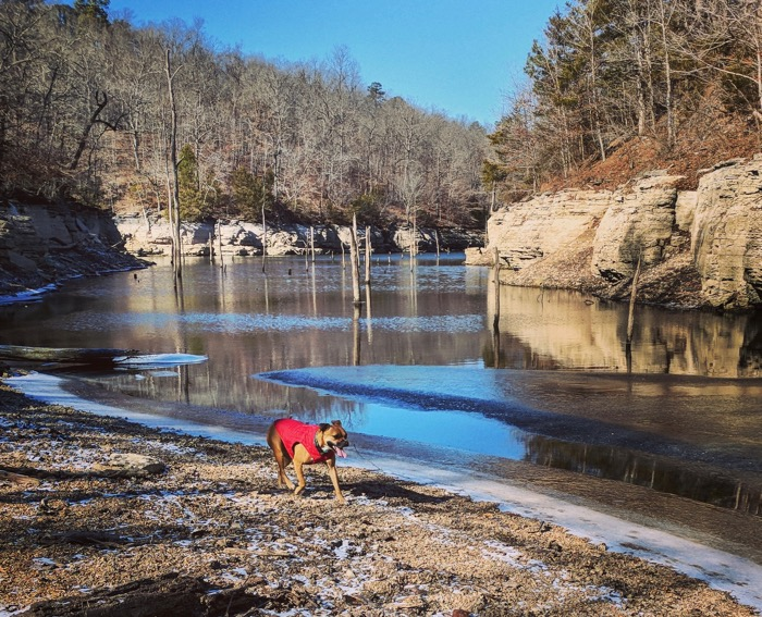 bugsy hiking hobbs state park