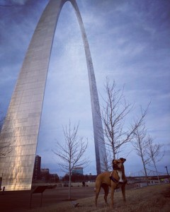Bugsy and the St Louis Arch