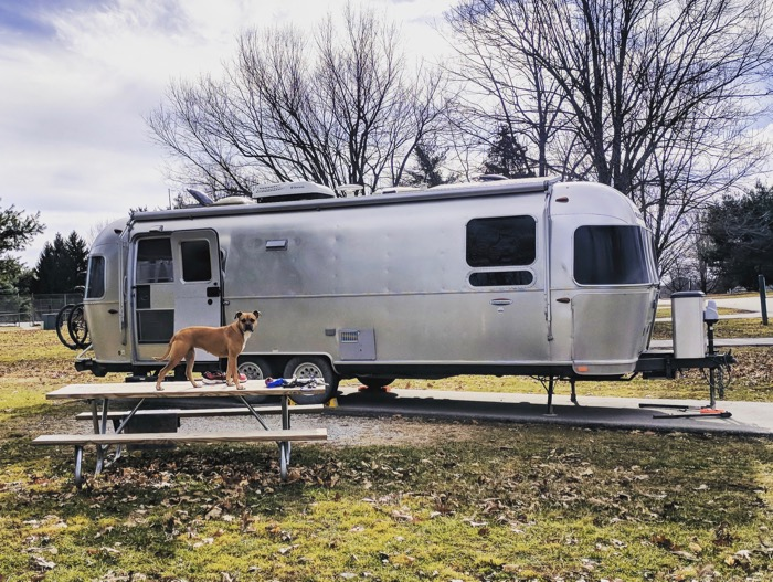 bugsy and the airstream at kentucky horse park campground