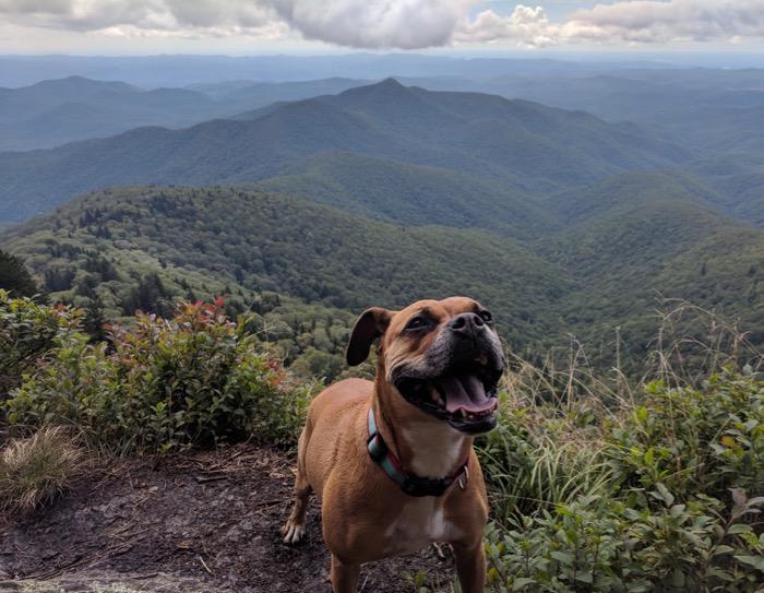 hiking-sylva