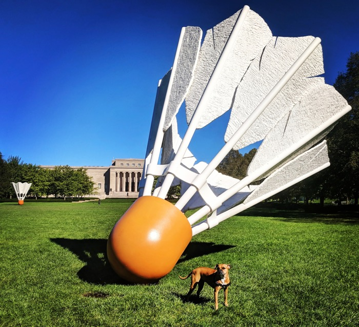 bugsy and the shuttlecock kc