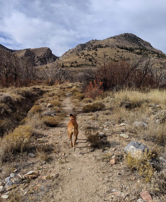 Lexington Arch trail Great Basin