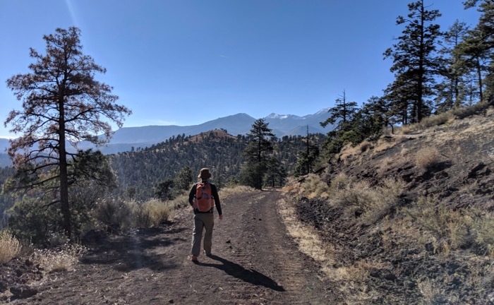 O'Leary Trail, Flagstaff