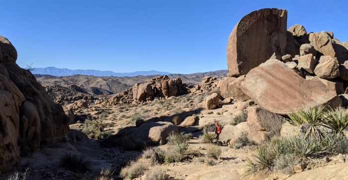 hiking Ryan Mountain at Joshua Tree
