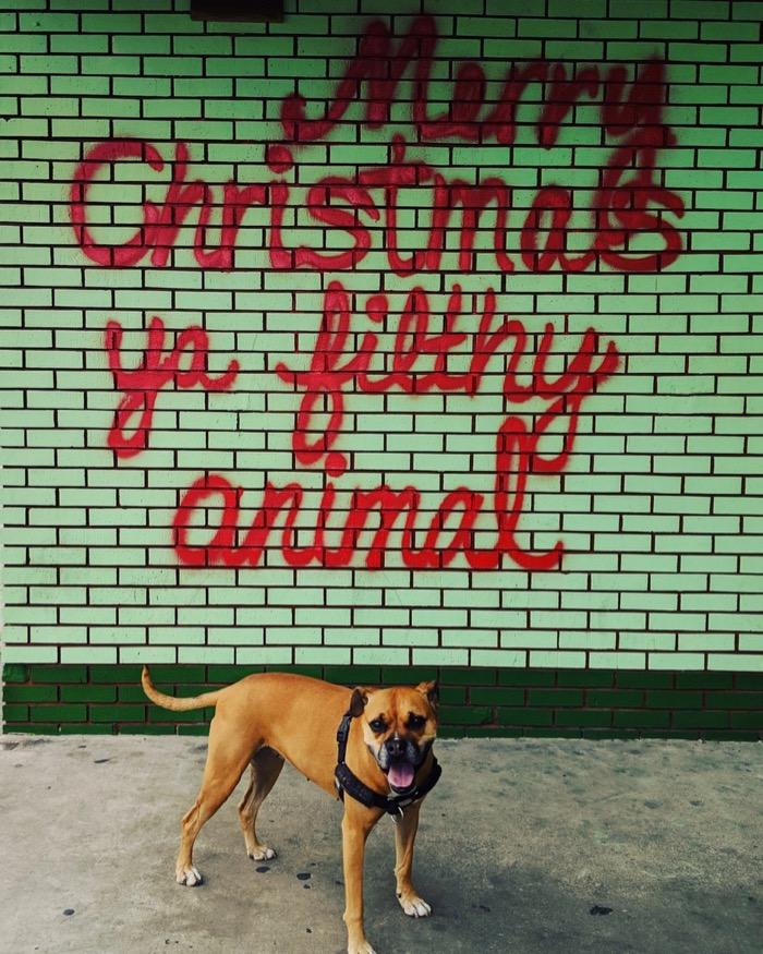Merry Christmas ya filthy animal mural in Austin