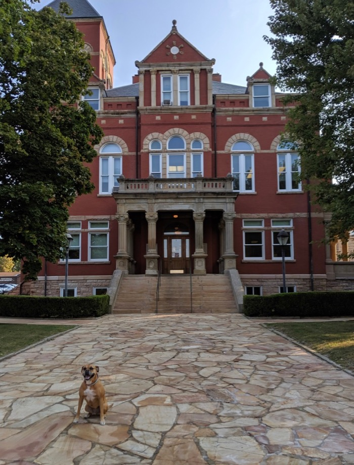 Bugsy in front of the Fayette County Courthouse