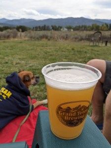 a beer in the yard at Grand Teton Brewing