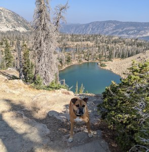 hiking by alpine lakes in Mirror Lake Rec Area