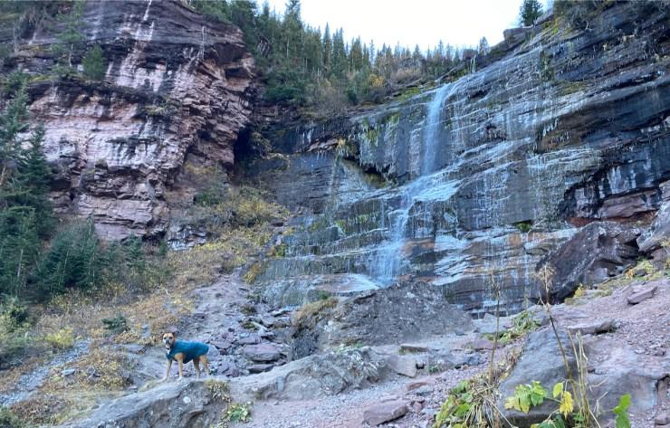 Bugsy at Bear Creek Falls