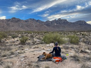 a sunset picnic on the Nature Trail in Catalina Mountains State Park