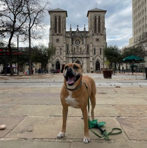 Bugsy in front of San Fernando Cathedral