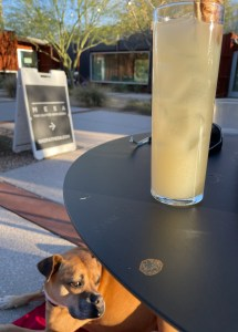 Bugsy having a cocktail at the MSA Annex