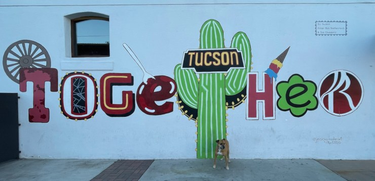 Bugsy at the Tucson Together mural