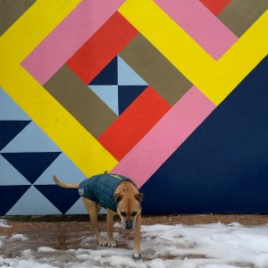 Bugsy and street art in Austin