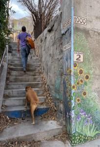 walking up Stairway #2 in Bisbee