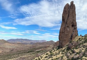 Praying Hands in Lost Dutchman