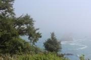 Fog at Palmer Point.