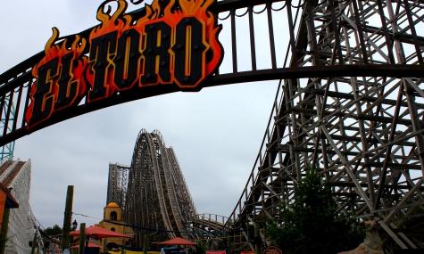 El Toro schaffte es letztes Jahr auf Platz 1! Schafft er es auch dieses Jahr?