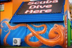 The Kraken at Geko Divers