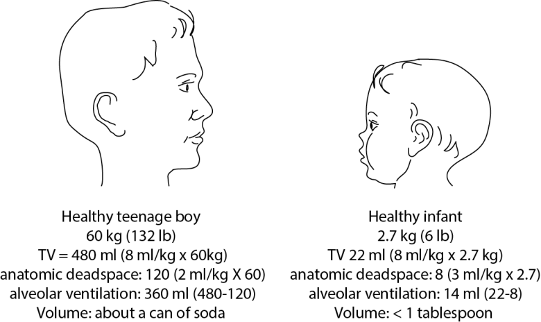 Illustration comparing dead space and tidal volume in a teenager vs a healthy infant