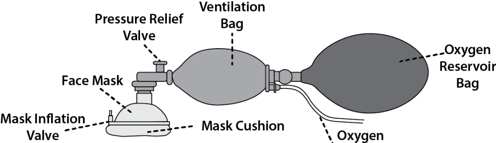 Illustration showing the parts of a bag-valve-mask device, using a self-filling bag as an example.