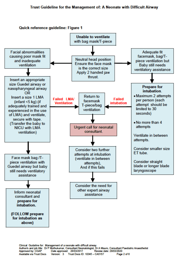 Difficult Airway Algorithm from the Clnical Guideline for Management of a neonate with difficult airway.
