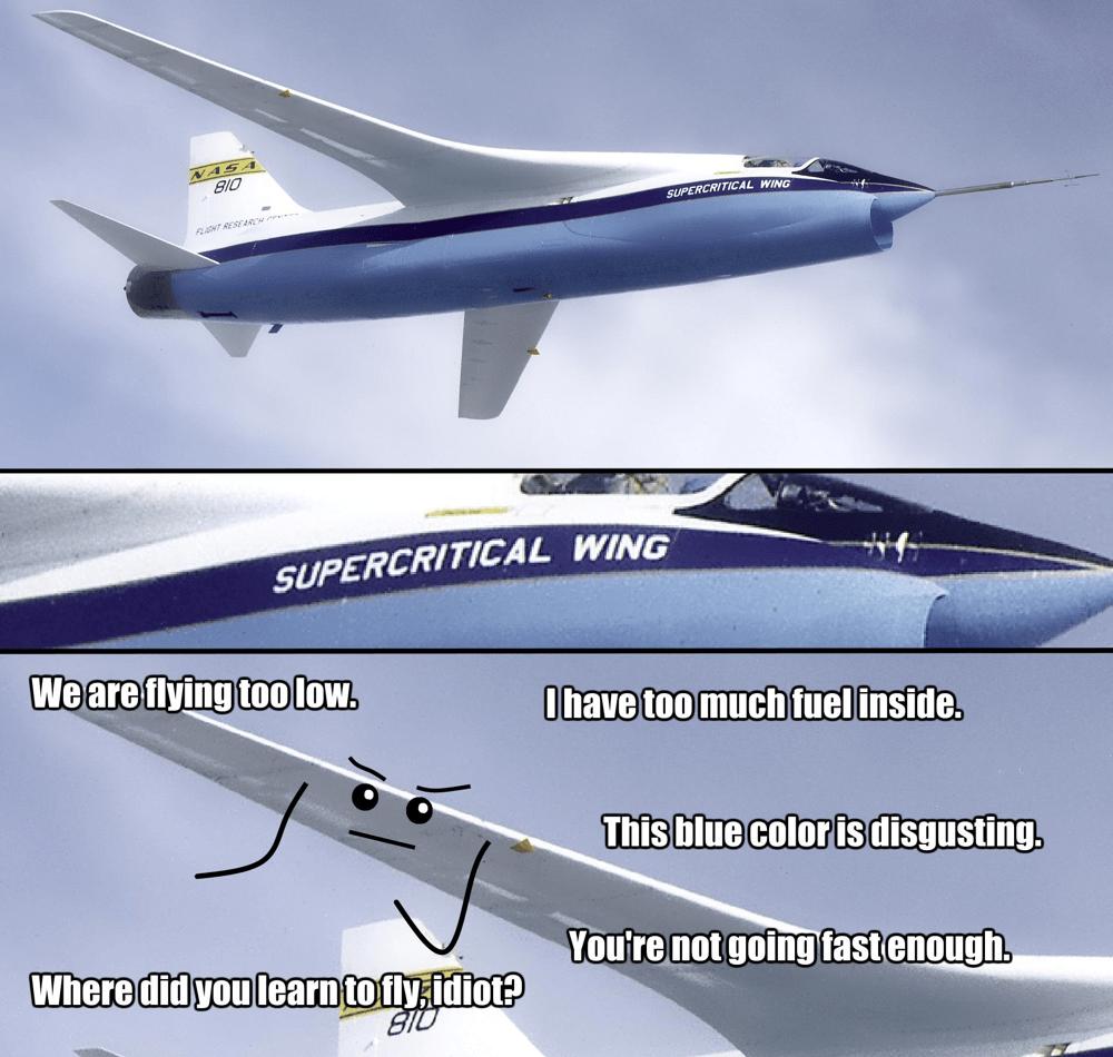 Aviation Species – Buy Learn Fly