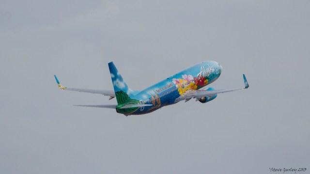 Alaska hawaii bird dfw
