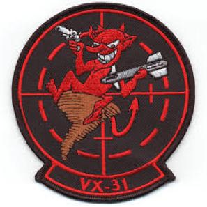 VX-31 Patch
